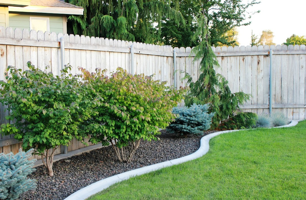 Image of: Backyard Landscapes Ideas