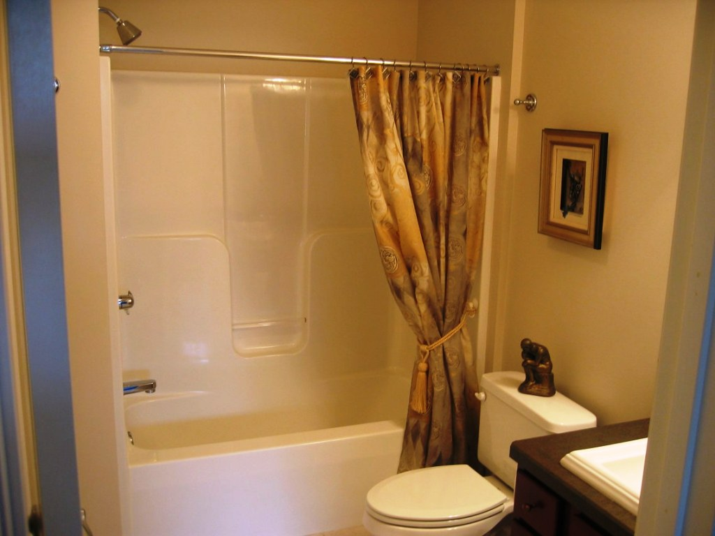 Image of: Basement Bathroom Design
