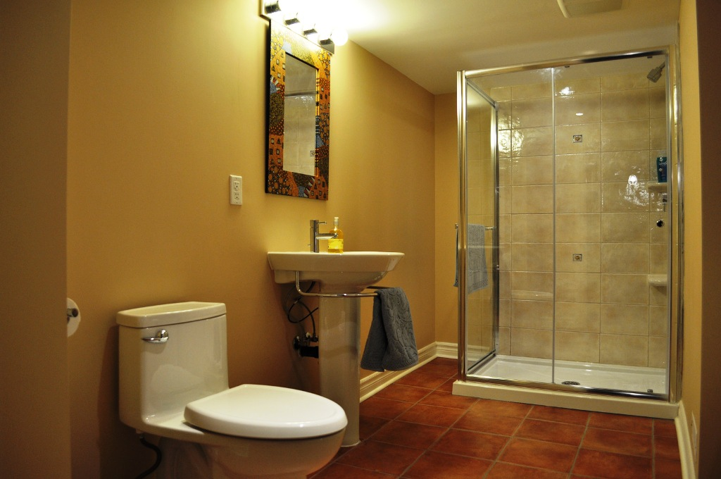 Image of: Basement Bathrooms Ideas