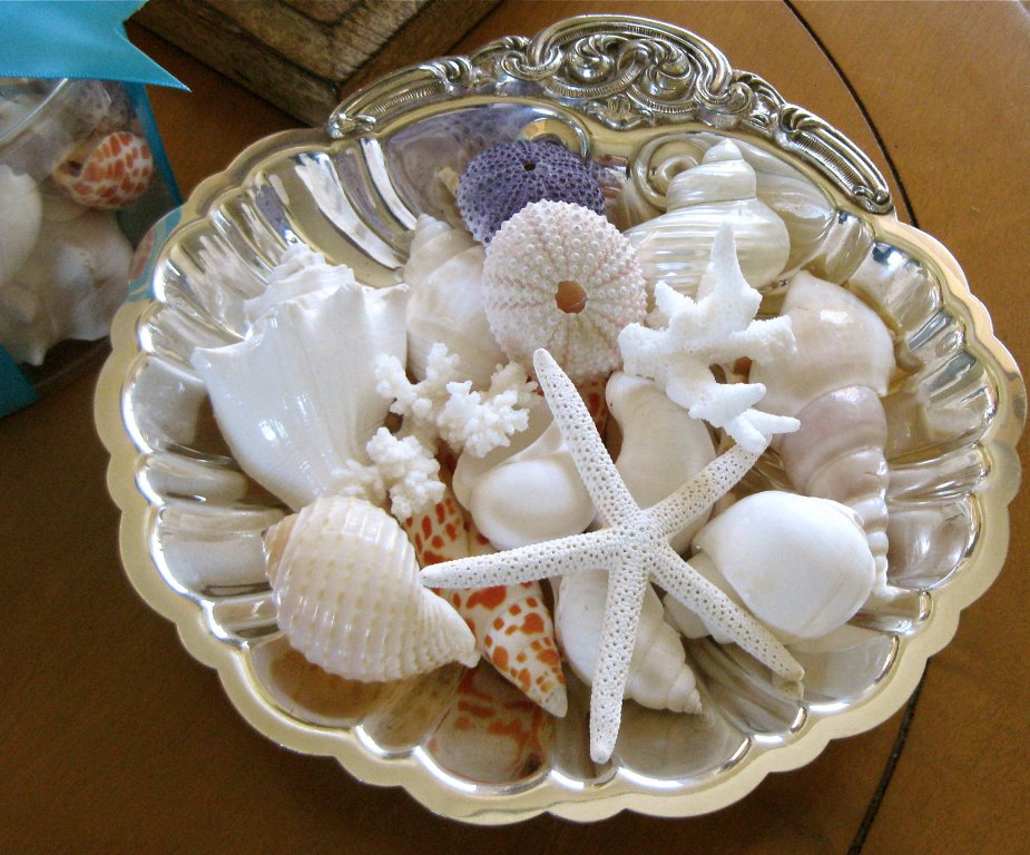 Image of: Bulk Starfish Decorations