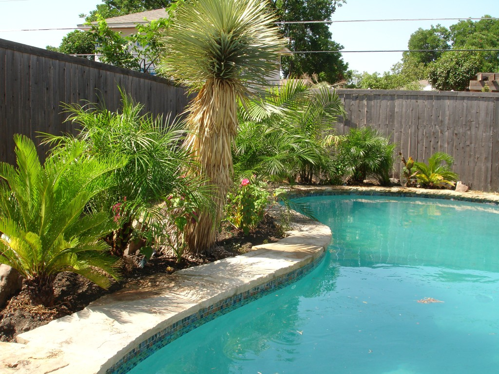 Image of: Pool Landscaping Photos