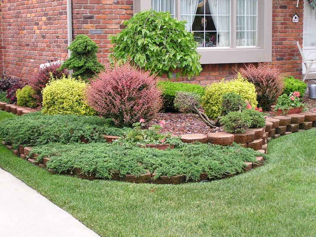 Image of: Landscape For Small Yards