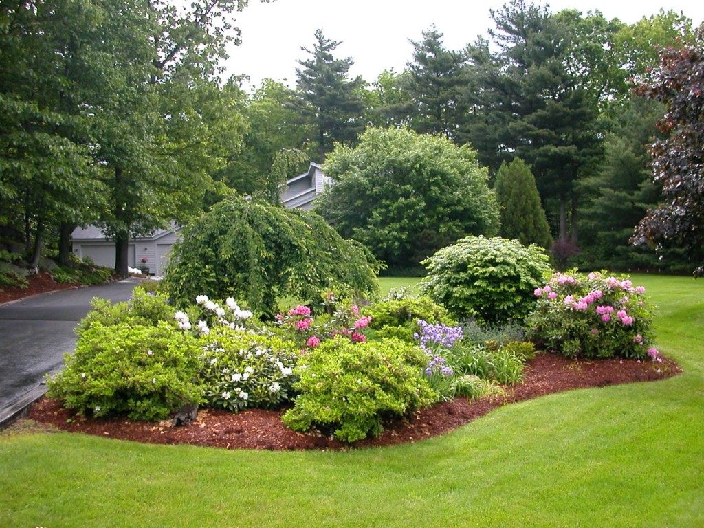 Image of: Landscapes For Small Yards