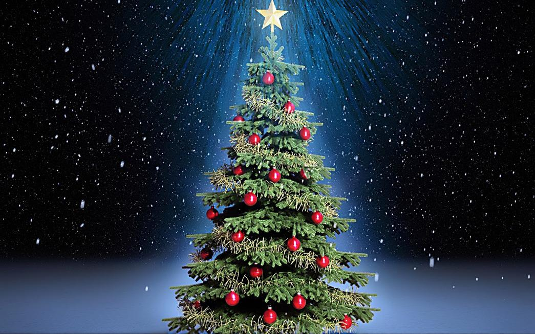 Image of: Photos Of Decorated Christmas Trees