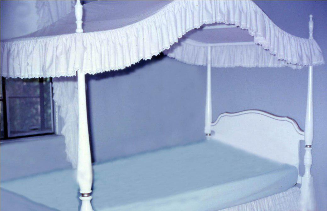 Image of: Twin Canopy Beds