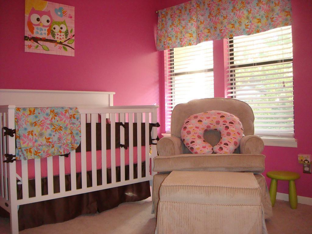 Image of: Baby Girl Nursery Inspiration