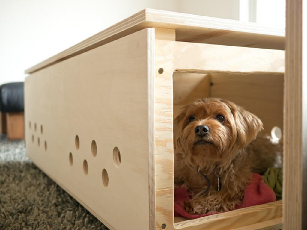 Image of: Best Decorative Crates For The Dog