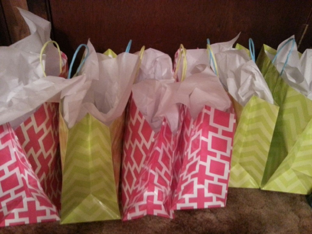 Image of: Bridal Shower Gift Ideas Bags