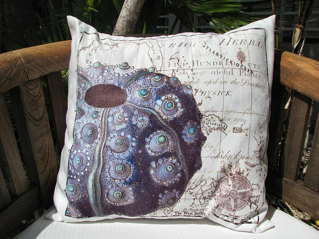 Image of: Coastal Decor Pillows