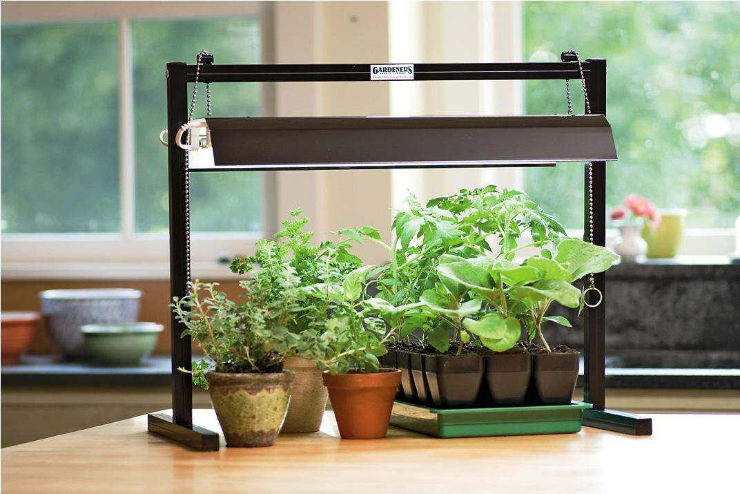 Cool Indoor Plant Stands