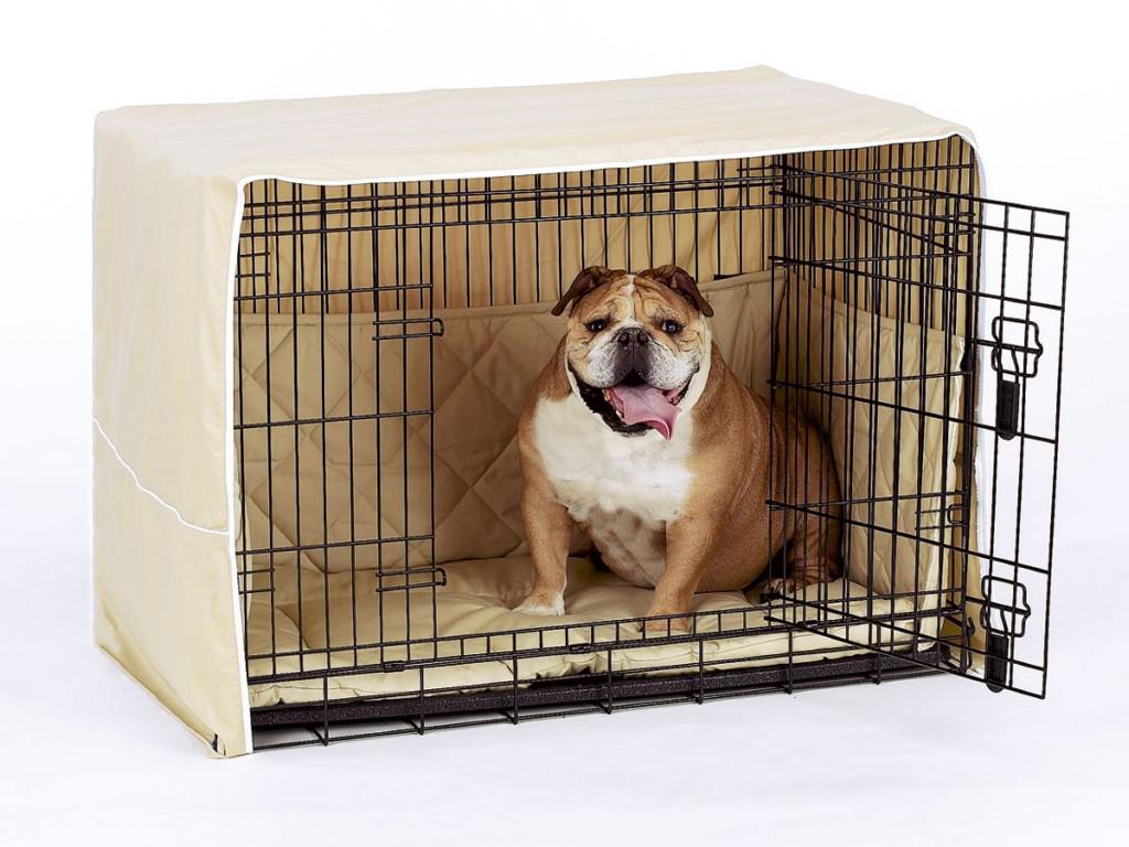 Image of: Decorative Bull Dog Crates