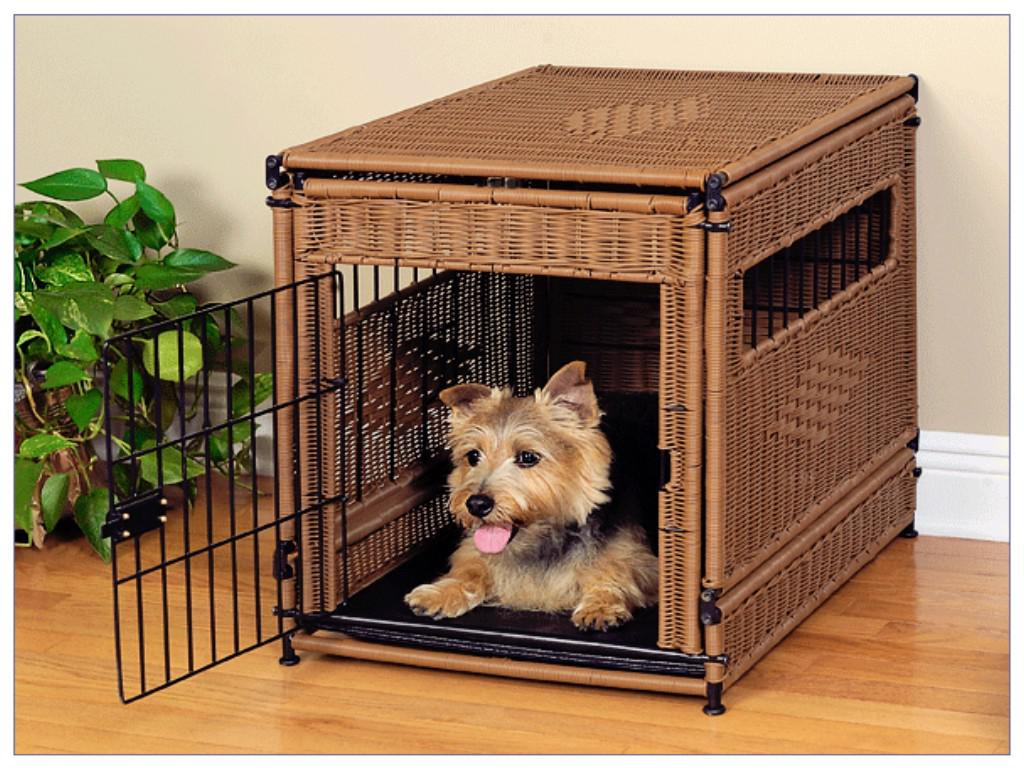 Image of: Decorative Cute Dog Crate