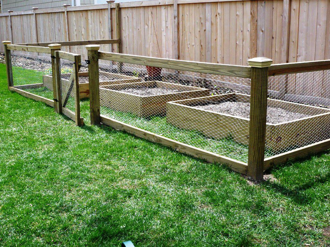 Image of: Decorative Fencing To Keep Rabbits Out