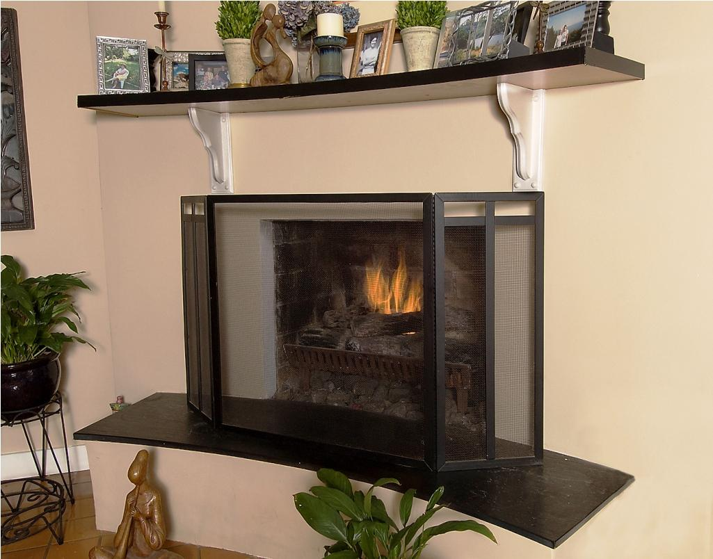Image of: Decorative Glass Fireplace Screens