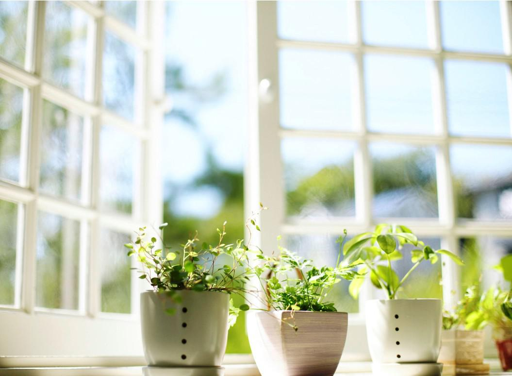 Image of: Herb Indoor Planters