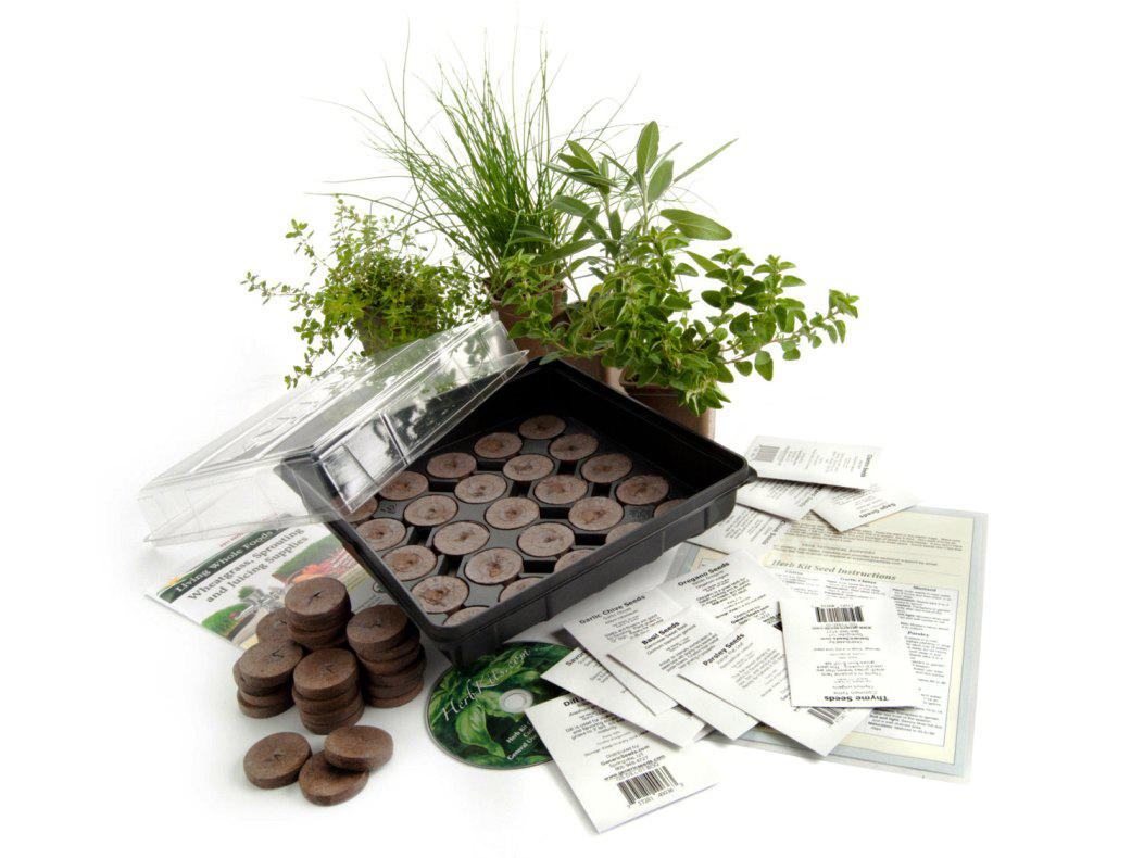 Image of: Indoor Herb Garden Kits Walmart