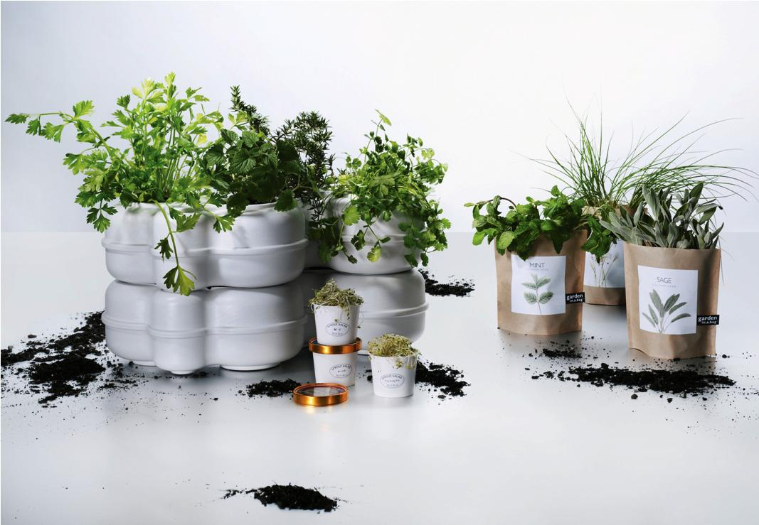Image of: Indoor Herb Garden Light