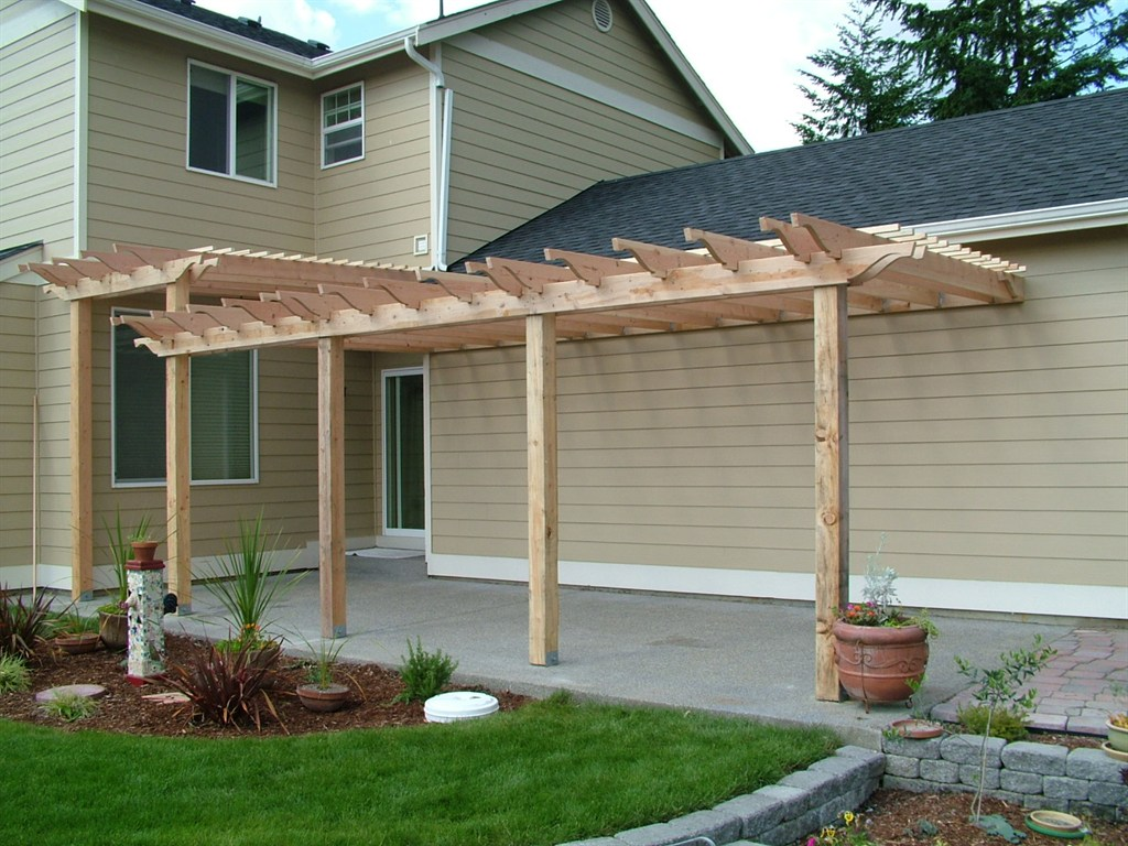 Image of: Back Yard Canopy