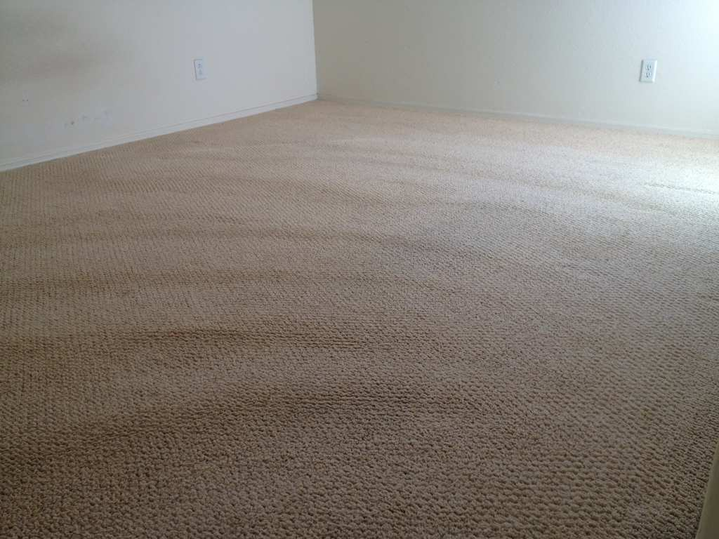 Image of: Carpet Cleaning Tips