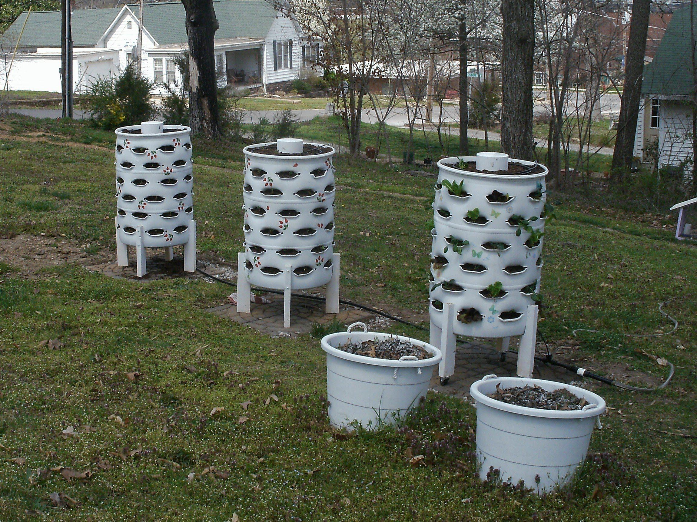 Image of: Half Barrels For Garden