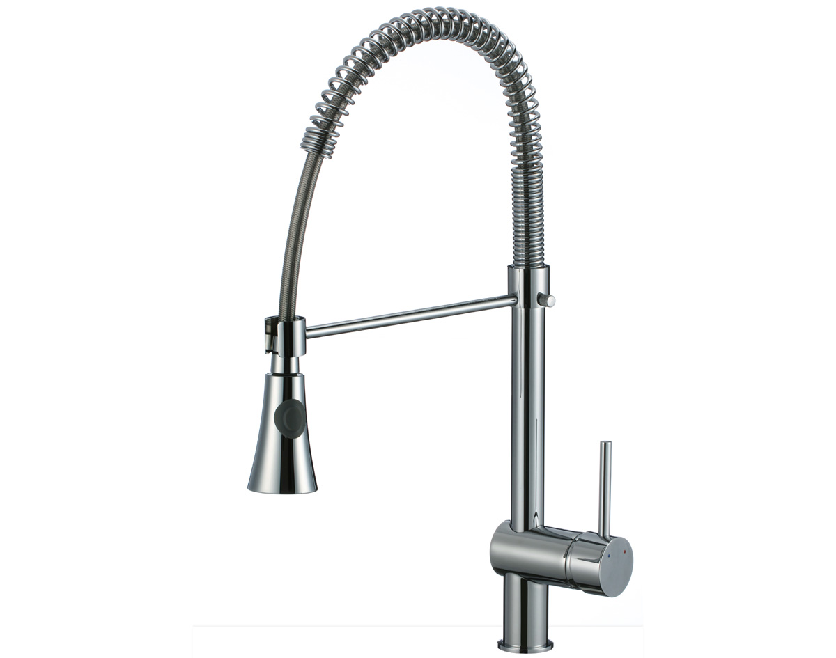 Image of: Kitchen Faucet Sprayer