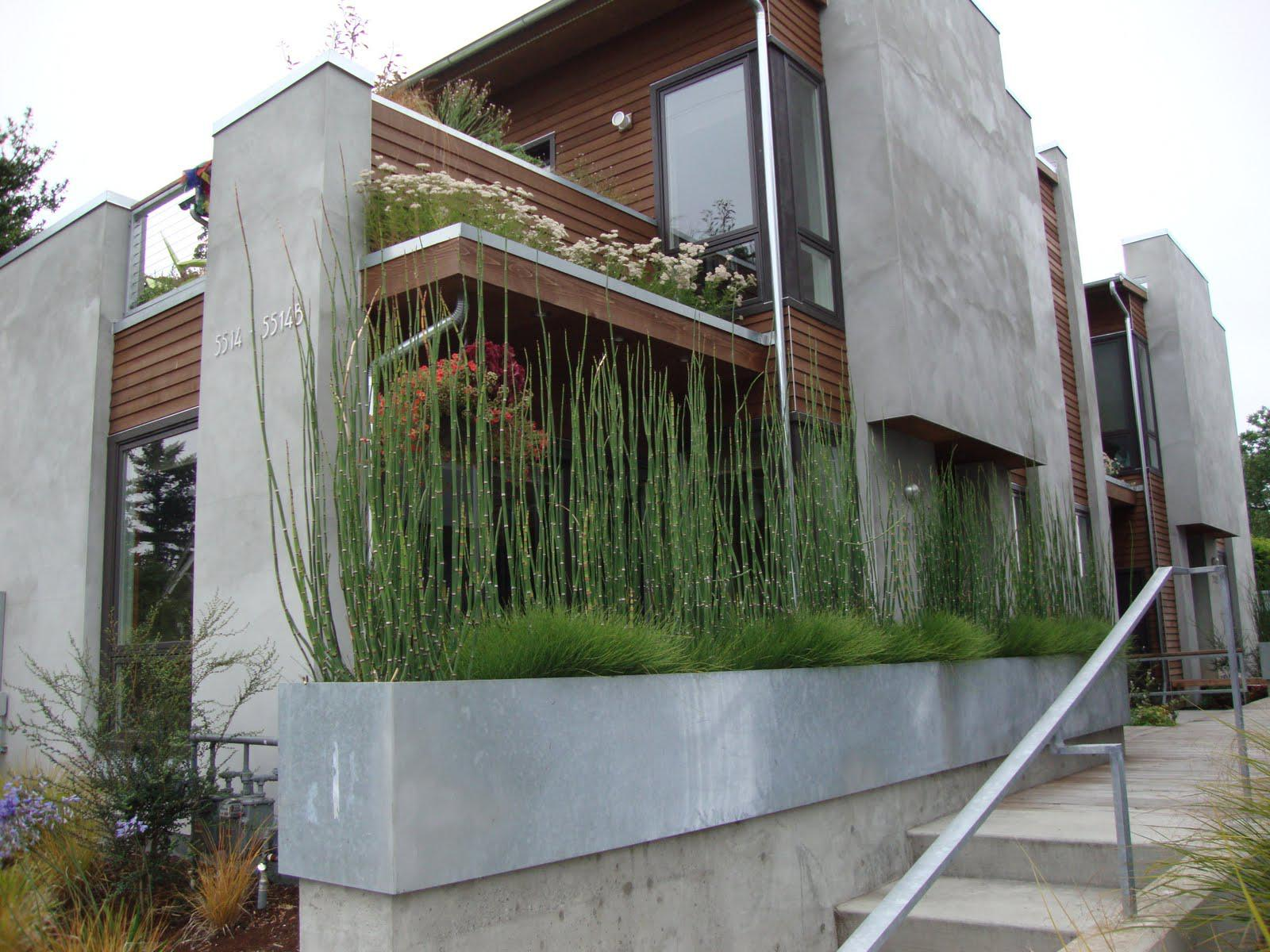 Image of: Large Outdoor Planters
