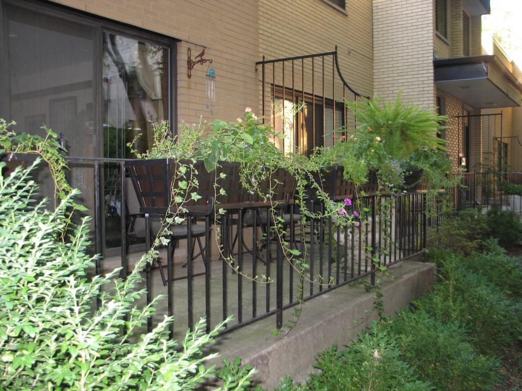 Image of: Metal Window Boxes For Plants