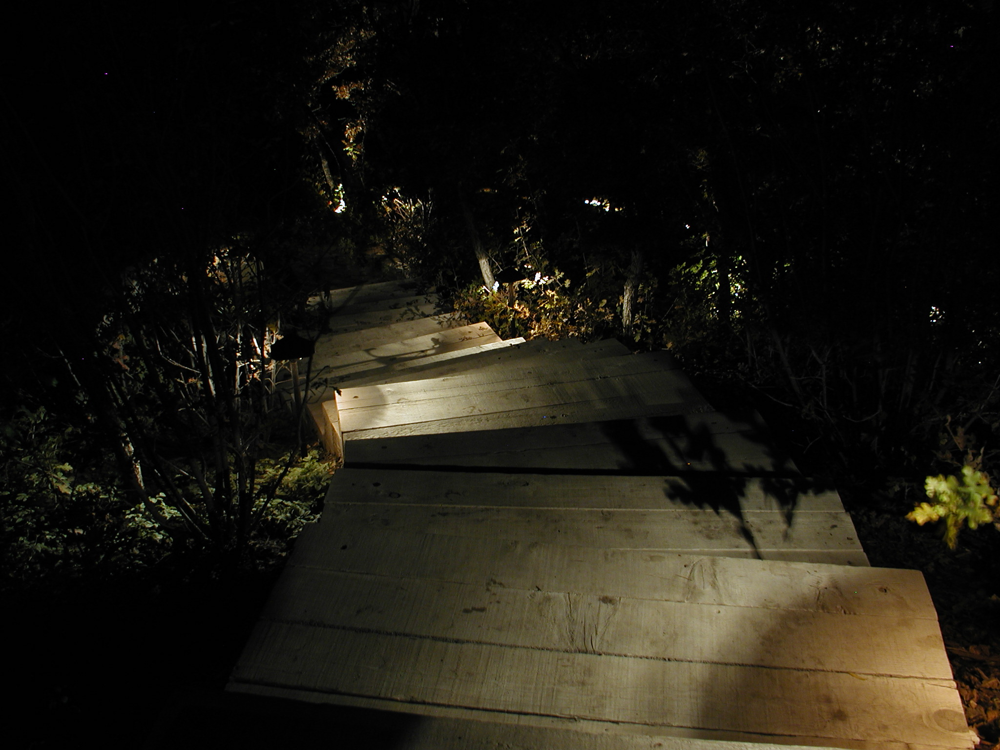 Image of: Outdoor Pathway Lighting