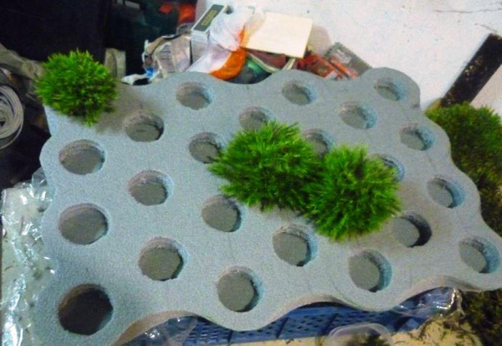 Image of: Bath Mat Made Of Moss