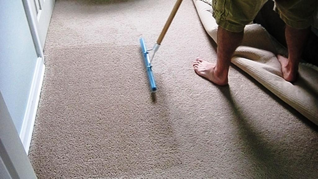 Image of: Carpet Cleaning Rake