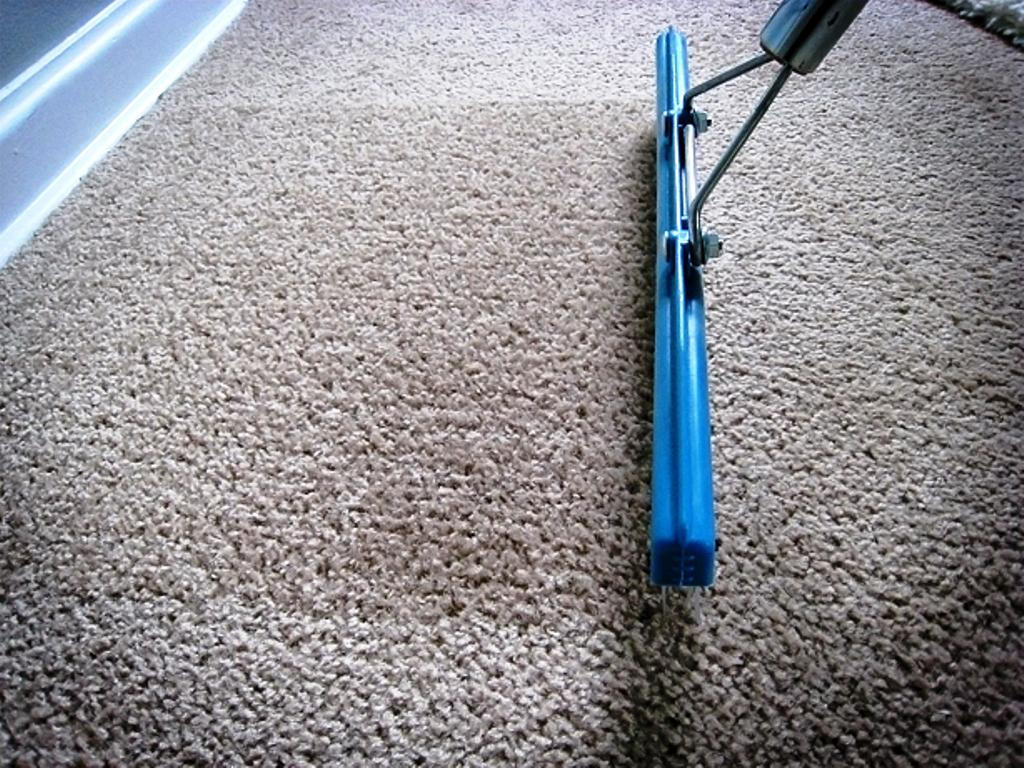 Image of: Carpet Rake Pet Hair