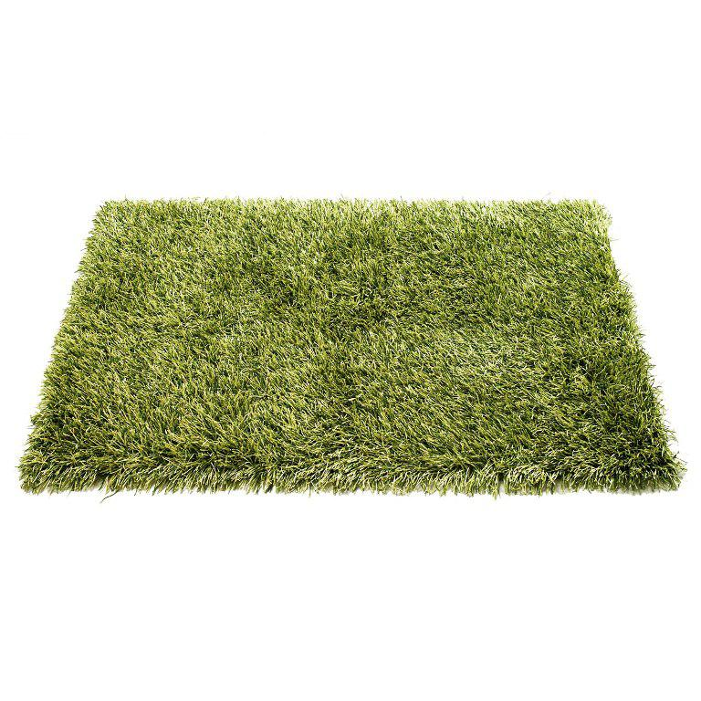 Image of: Green Shag Rug
