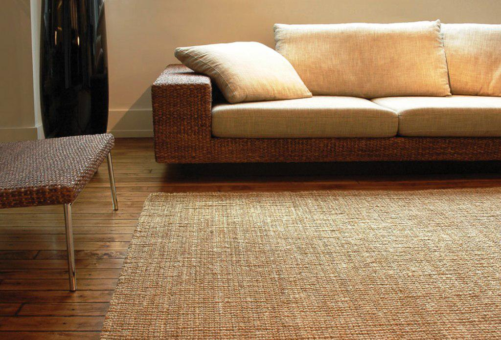 Image of: Natural Jute Rug