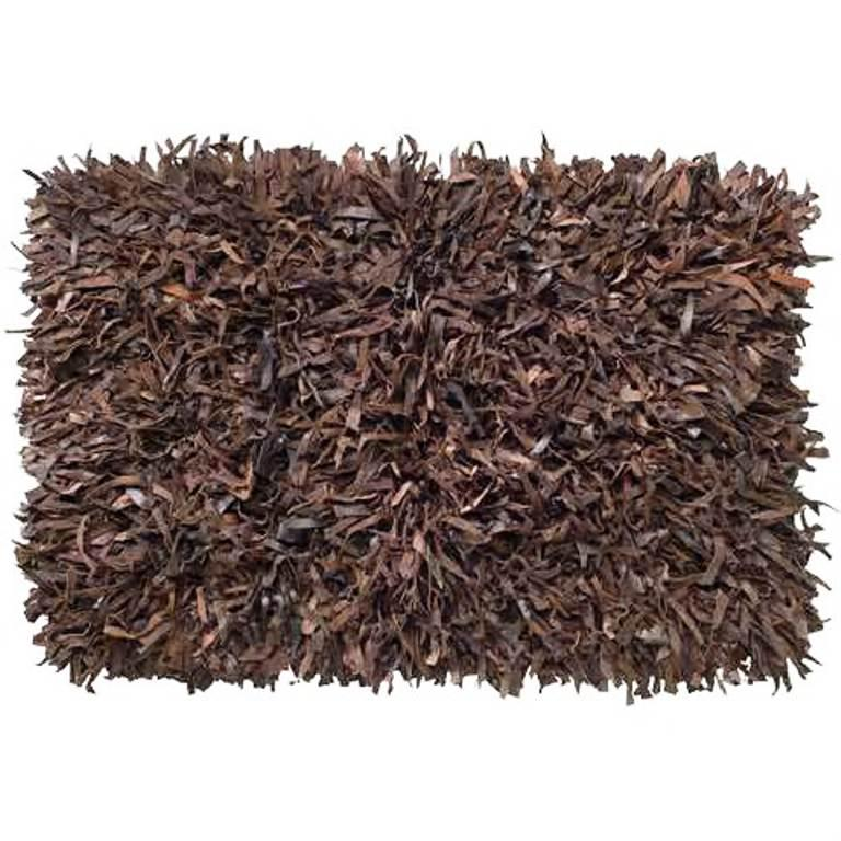 Image of: Shag Area Rugs
