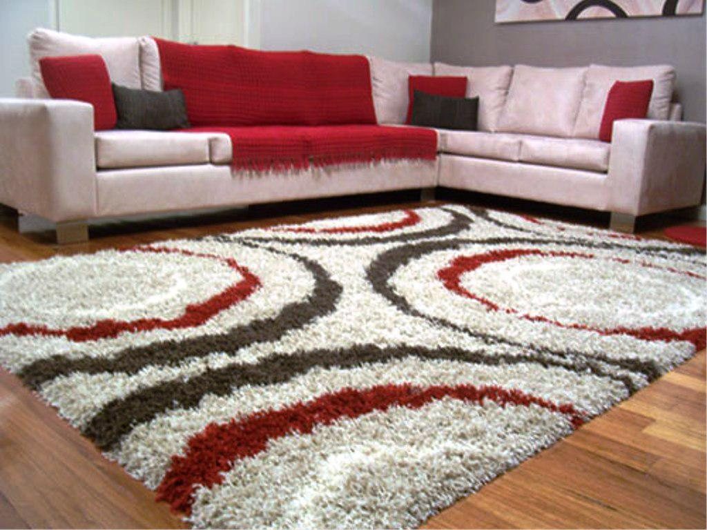 Image of: Shag Carpet Area Rugs