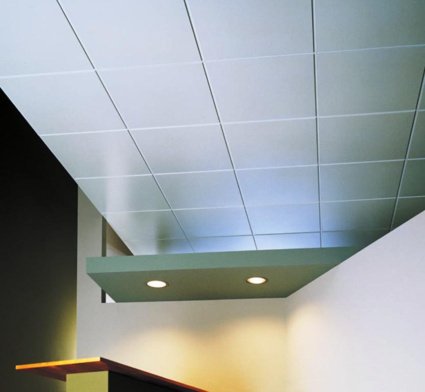 Image of: Asbestos Ceiling Tiles Pictures