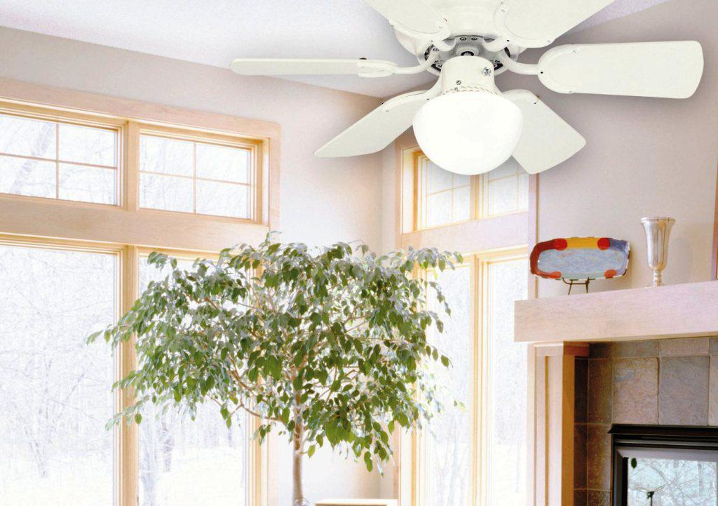 Image of: Glass Light Covers for Ceiling Fans