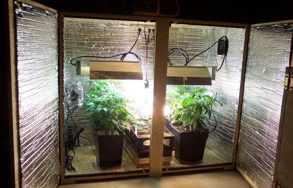 Image of: Homegrown Hydroponics Grow Box Systems