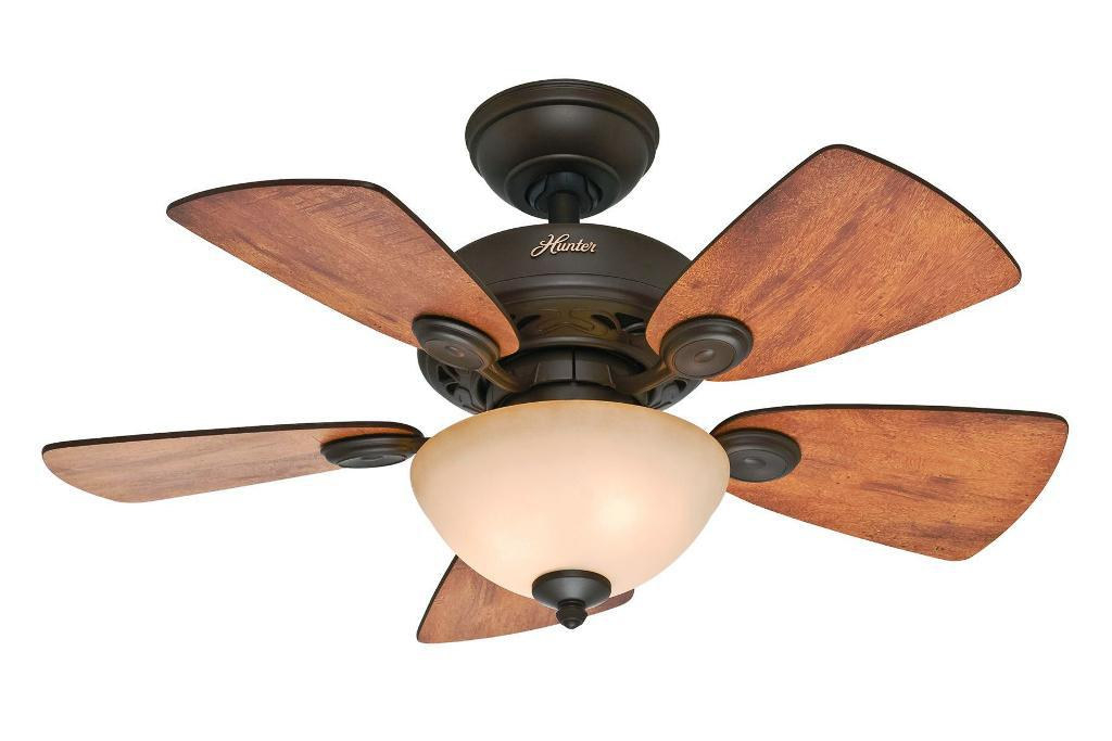 Image of: Hunter Ceiling Fan Blades