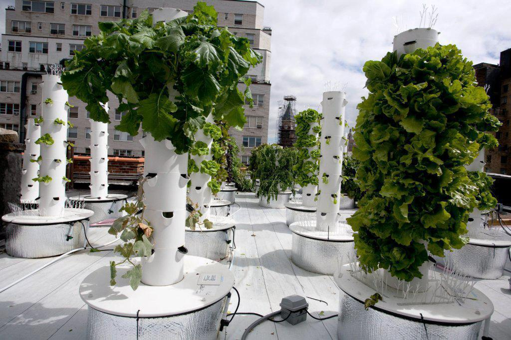 Image of: Hydroponic Garden Tower