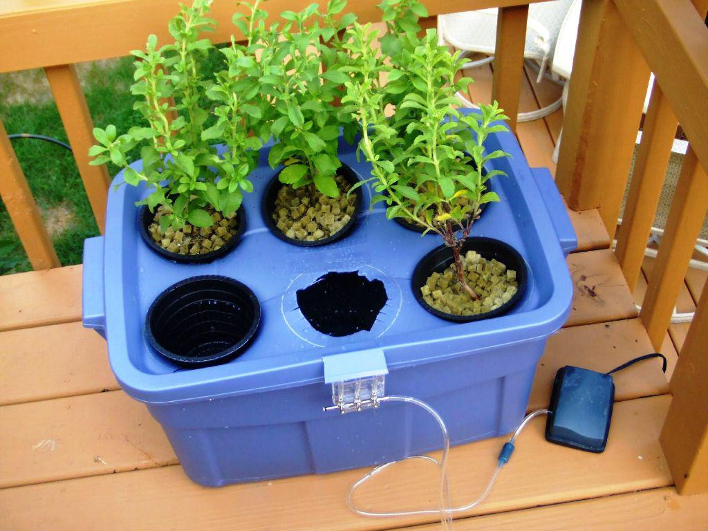 Image of: Hydroponic Grow Boxes