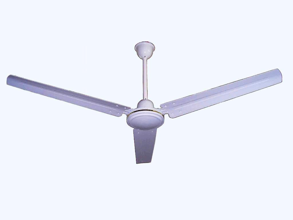 Image of: Industrial Look Ceiling Fan