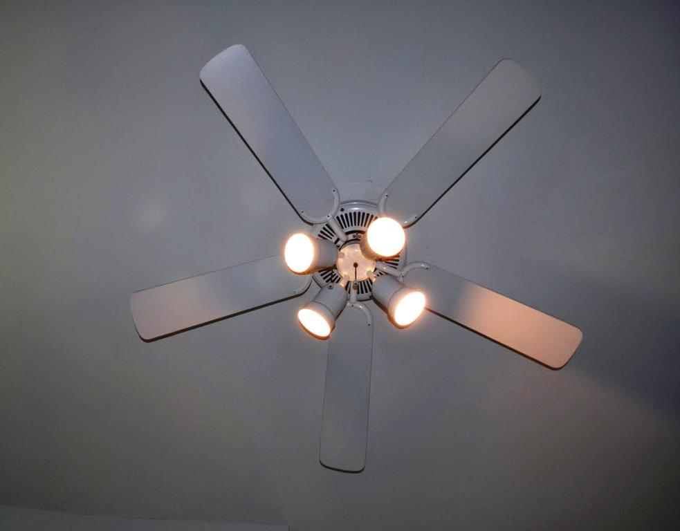 Image of: Light Covers For Ceiling Fans